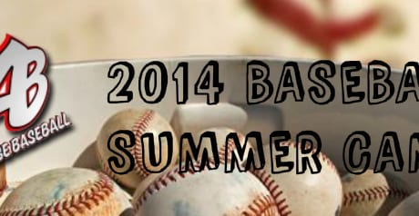 Advantage-Baseball-Summer-Camps-20142